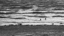 Sea Change  :  Aldinga Beach