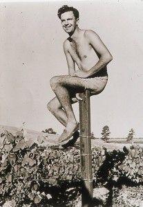 Mate Brajkovich in Mate's Vineyard, Kumeu 1950. Photo supplied