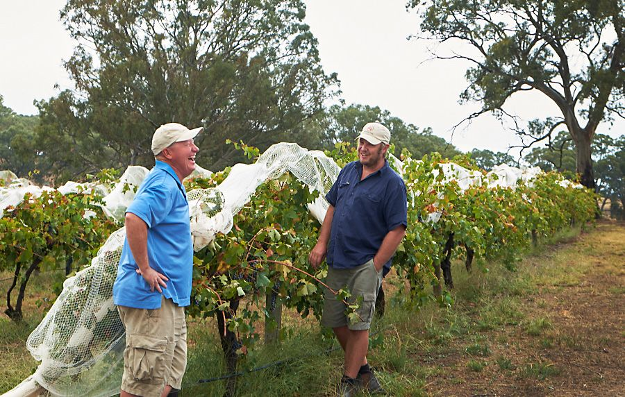 Michael bunch sampling with grower Joel Mattchoss in an Old Vine Shiraz block, Eden Valley : Photo © Milton Wordley.