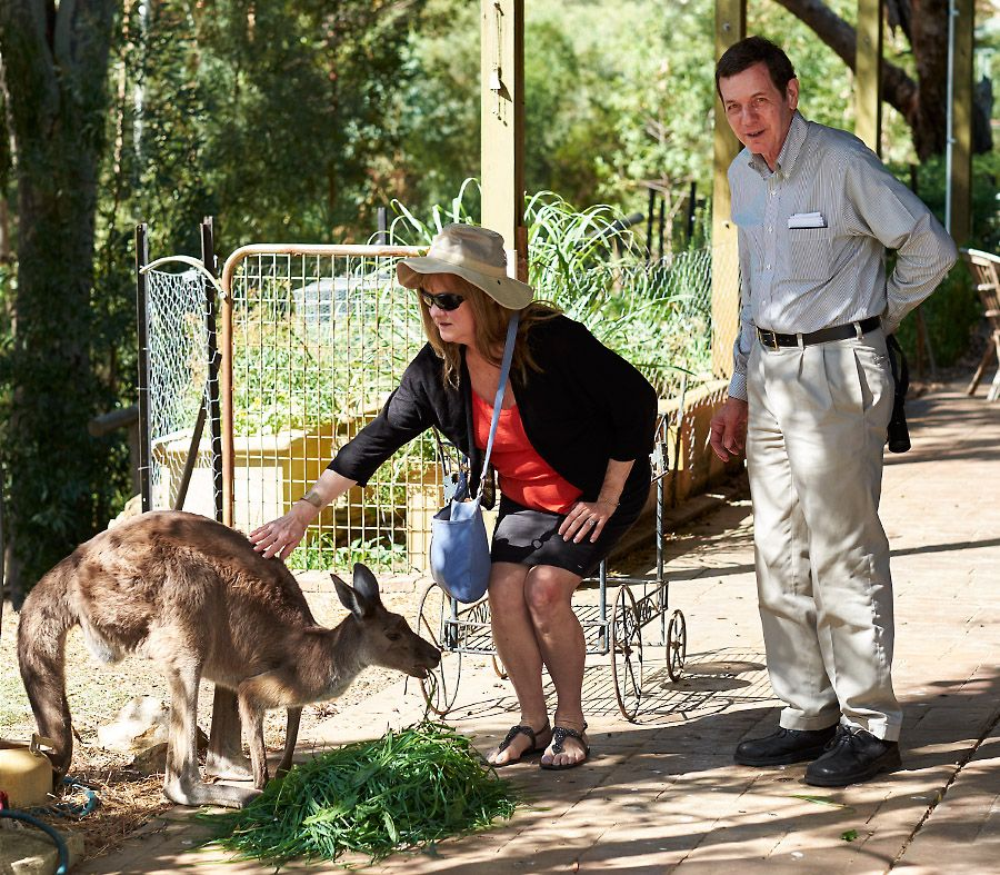 Julie and Dr Bob get to know 'Corny' at Kevin and Kaaren Palmer's sanctury in the Adelaide Hills : Photo © Milton Wordley.