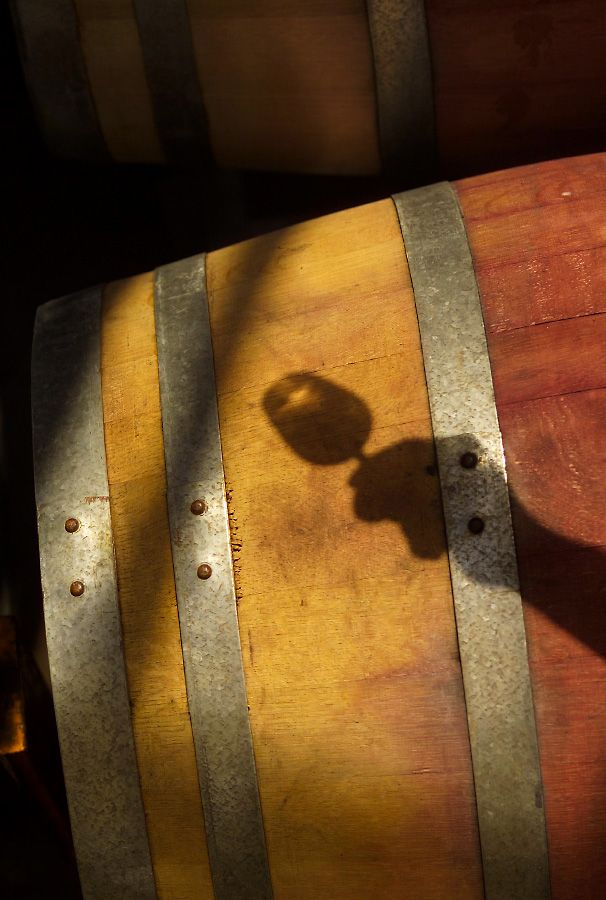 Barrel shadow : Photo © Milton Wordley.