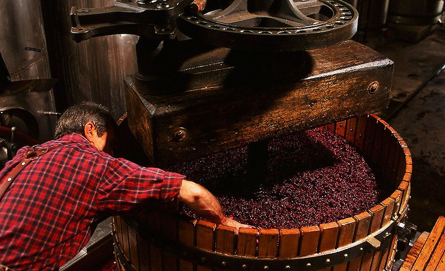 Tony Brady basket pressing during the 1996 Vintage at Wendouree : Photo Milton © Wordley.