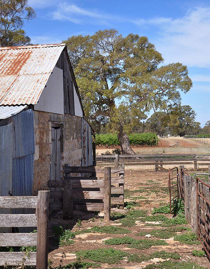 Majella's coonawarra shearing shed : Photo © Stella Scanlon.