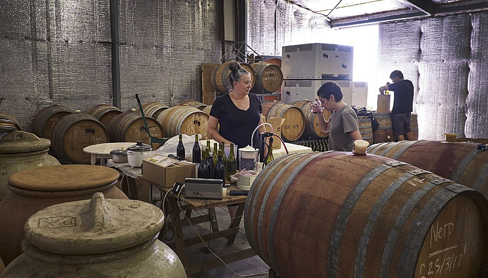 Gill in her wine shed bottling the 2017 'nero' with the help of Fino's Sharon Romeo and her bloody good cellar hand husband.....  : Photo © Milton Wordley